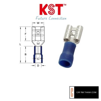 Cos ghim bọc nhựa KST FDV2-250 (cái)