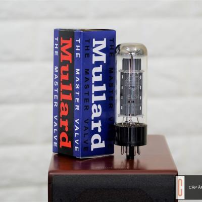 Bóng đèn Mullard EL34 Platinum